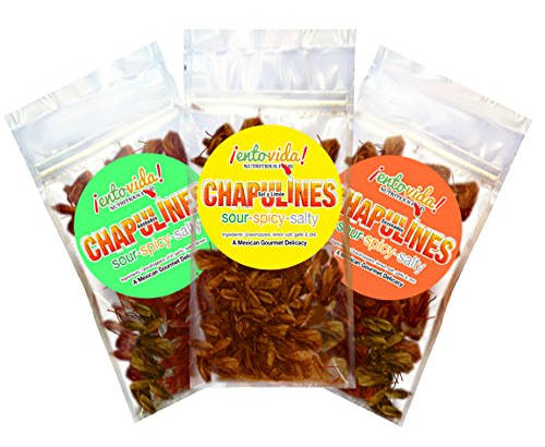 Chapulines sampler pack - 3 flavors of roasted chile grasshoppers