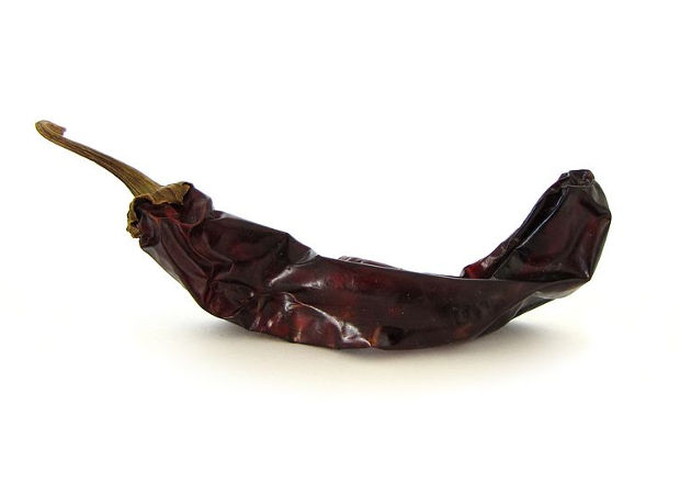 Single dried Guajillo pepper, brown with stem, lying on a white surface